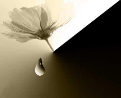 Coração que fala de saudade... (heart)